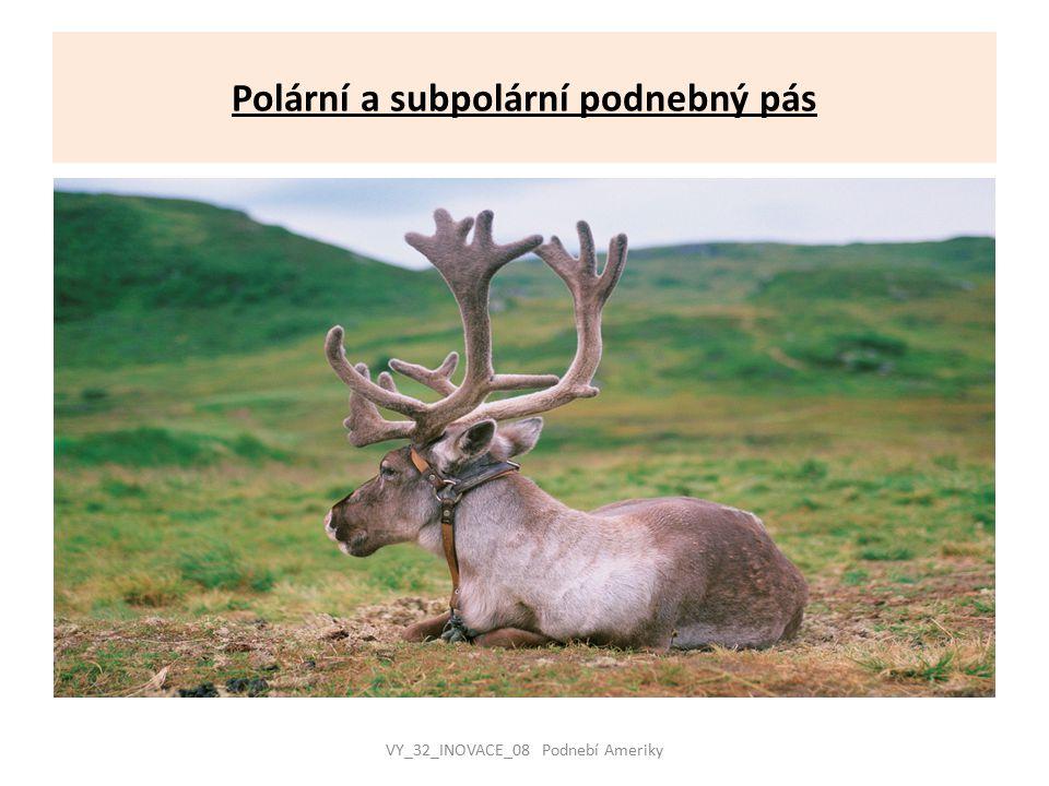 Polární a subpolární podnebný pás