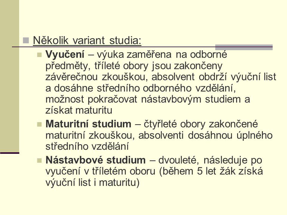 Několik variant studia: