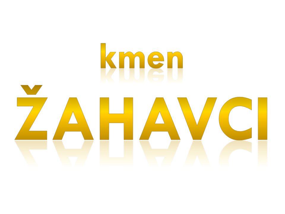kmen ŽAHAVCI