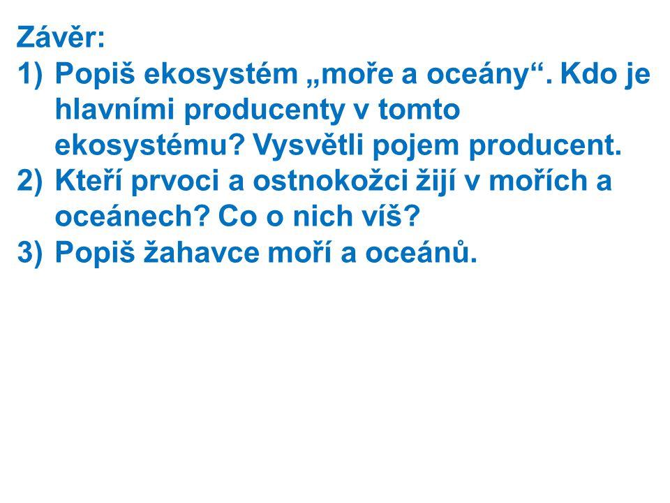 """Závěr: Popiš ekosystém """"moře a oceány . Kdo je hlavními producenty v tomto ekosystému Vysvětli pojem producent."""