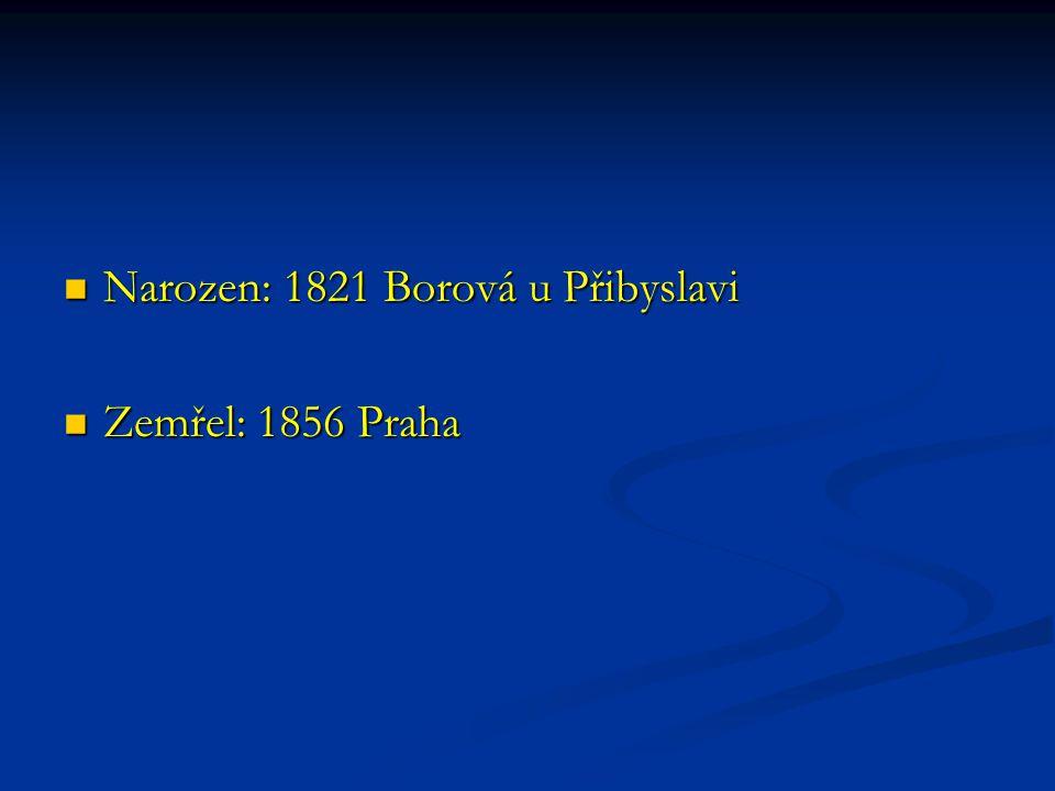 Narozen: 1821 Borová u Přibyslavi