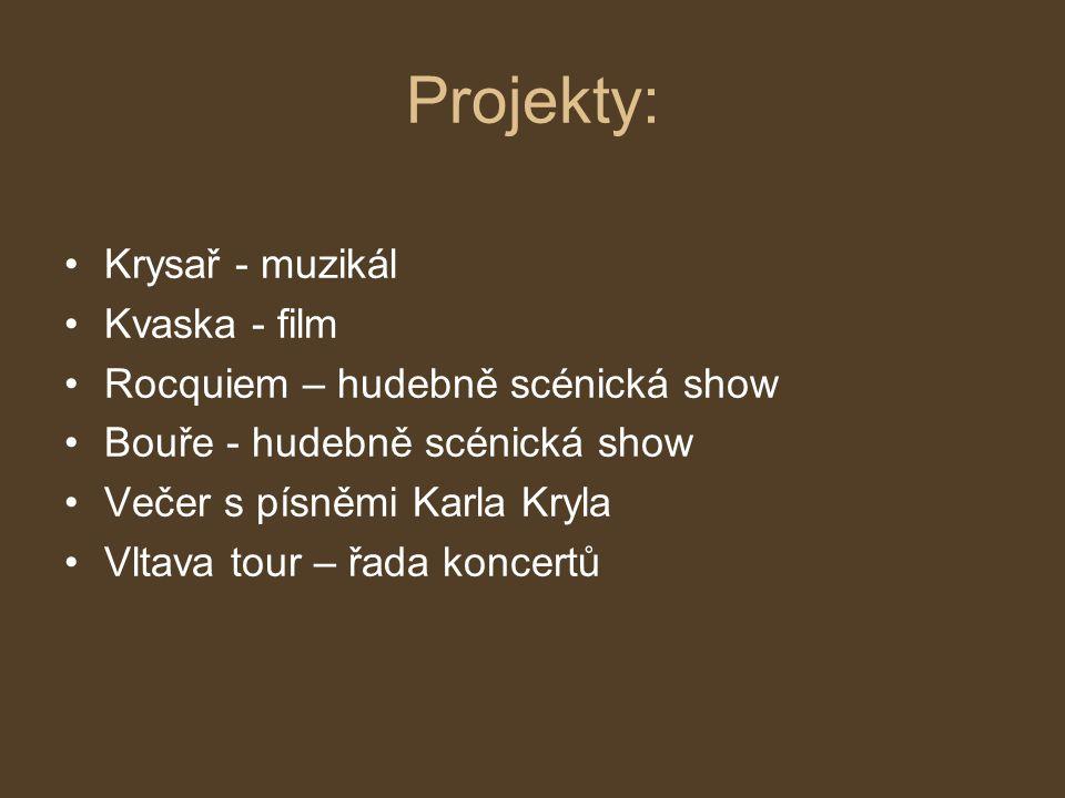 Projekty: Krysař - muzikál Kvaska - film