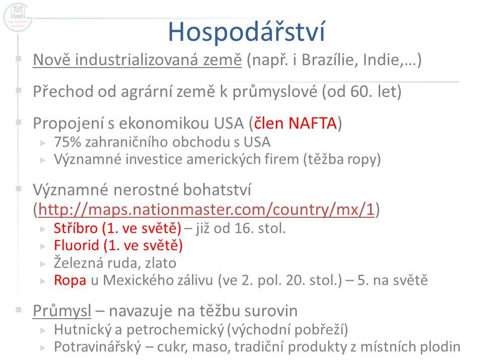 Hospodářství Nově industrializovaná země (např. i Brazílie, Indie,…)