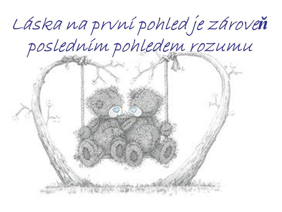 Láska na první pohled je zároveň posledním pohledem rozumu