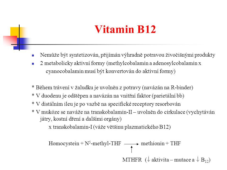 Vitamin B12 Nemůže být syntetizován, přijímán výhradně potravou živočišnými produkty.