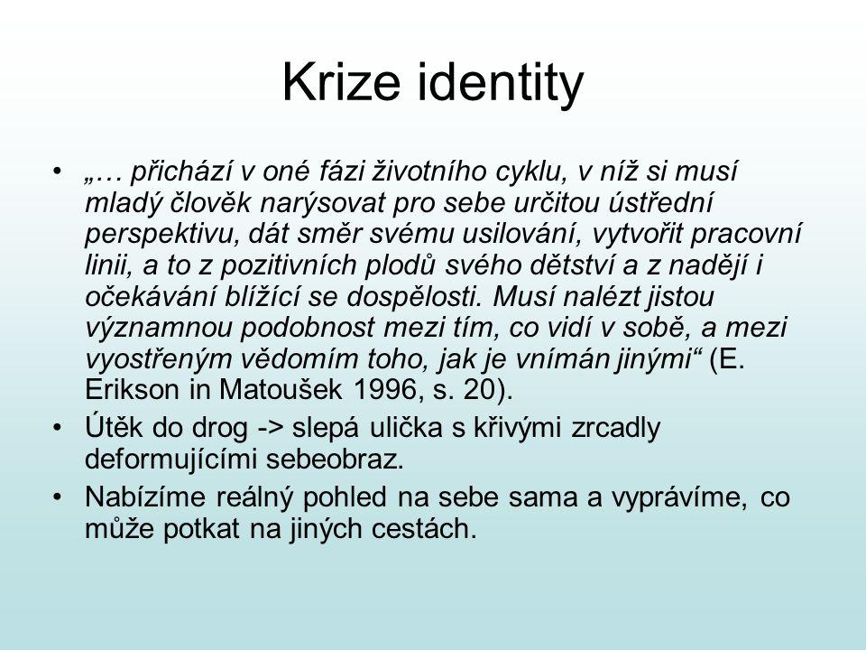 Krize identity