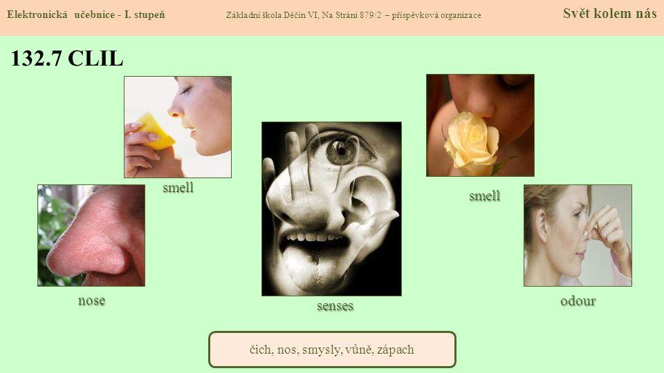 čich, nos, smysly, vůně, zápach