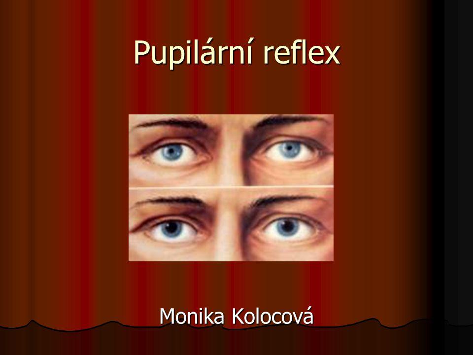 Pupilární reflex Monika Kolocová