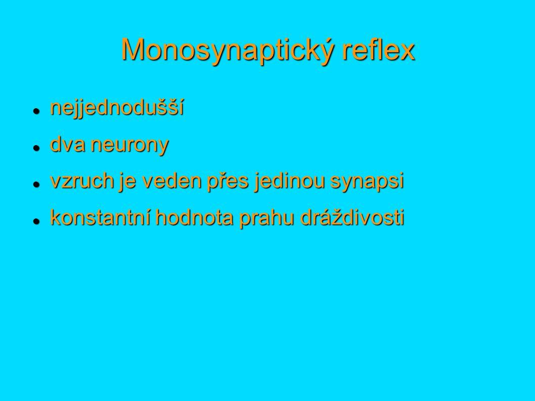 Monosynaptický reflex