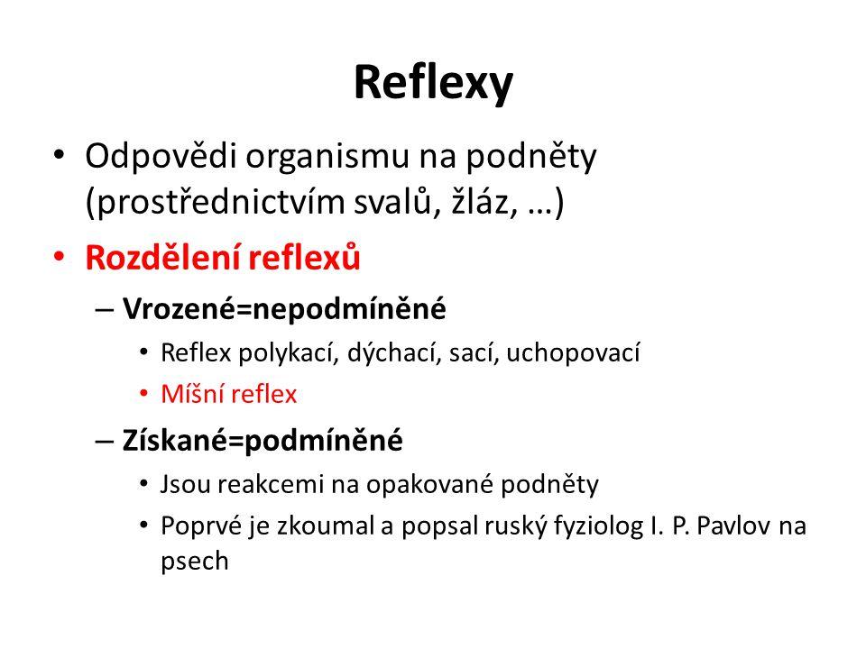 Reflexy Odpovědi organismu na podněty (prostřednictvím svalů, žláz, …)