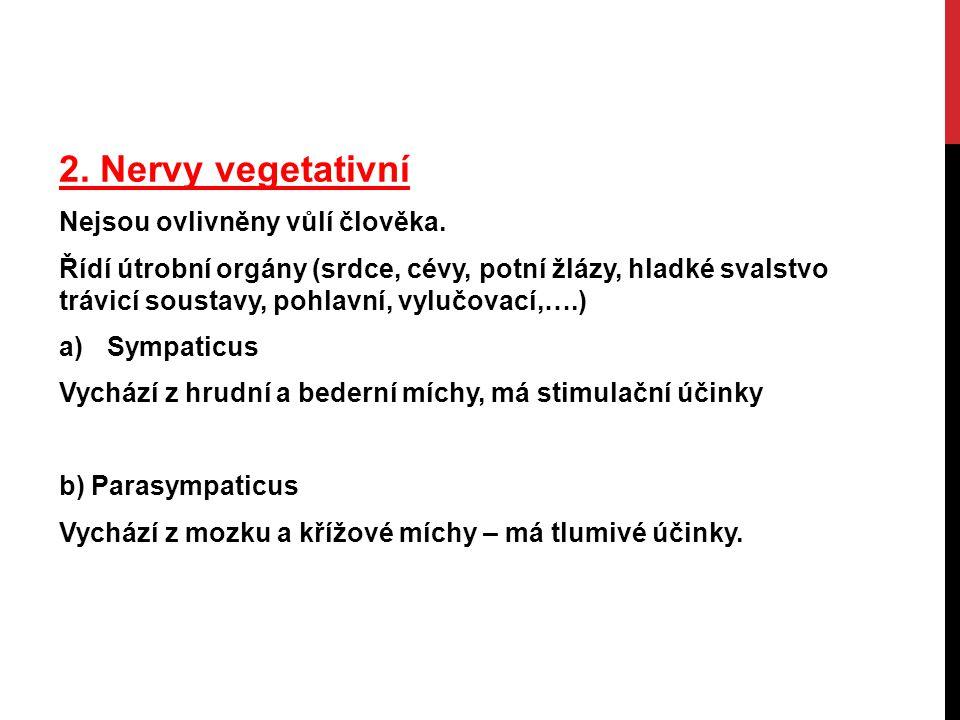 2. Nervy vegetativní Nejsou ovlivněny vůlí člověka.