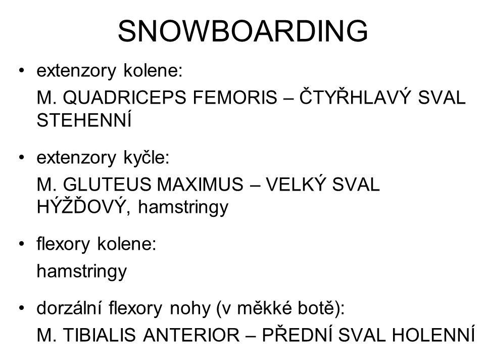 SNOWBOARDING extenzory kolene: