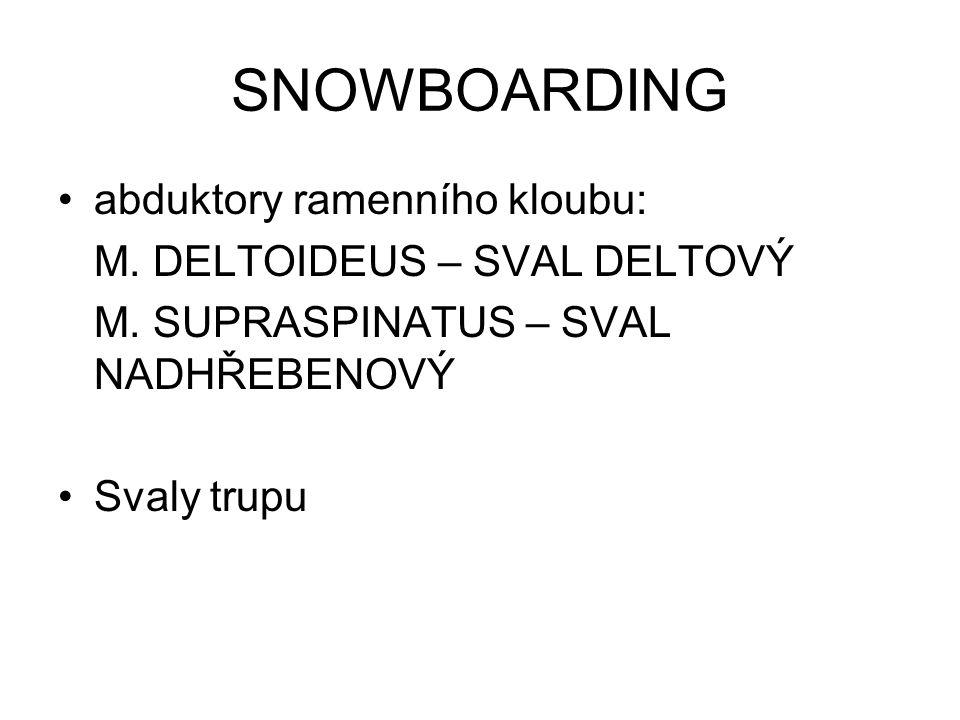 SNOWBOARDING abduktory ramenního kloubu: M. DELTOIDEUS – SVAL DELTOVÝ