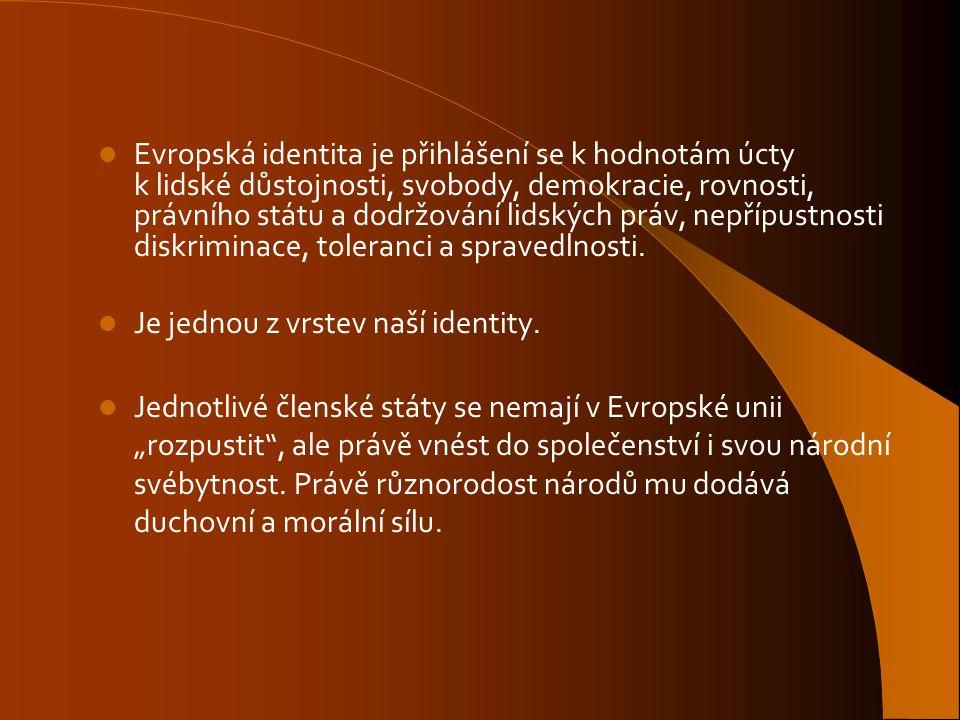 Evropská identita je přihlášení se k hodnotám úcty k lidské důstojnosti, svobody, demokracie, rovnosti, právního státu a dodržování lidských práv, nepřípustnosti diskriminace, toleranci a spravedlnosti.