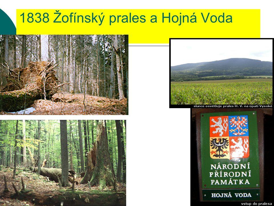 1838 Žofínský prales a Hojná Voda