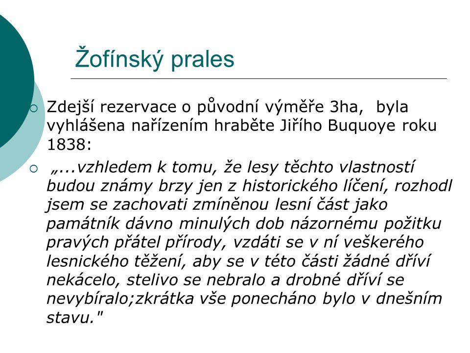 Žofínský prales Zdejší rezervace o původní výměře 3ha, byla vyhlášena nařízením hraběte Jiřího Buquoye roku 1838: