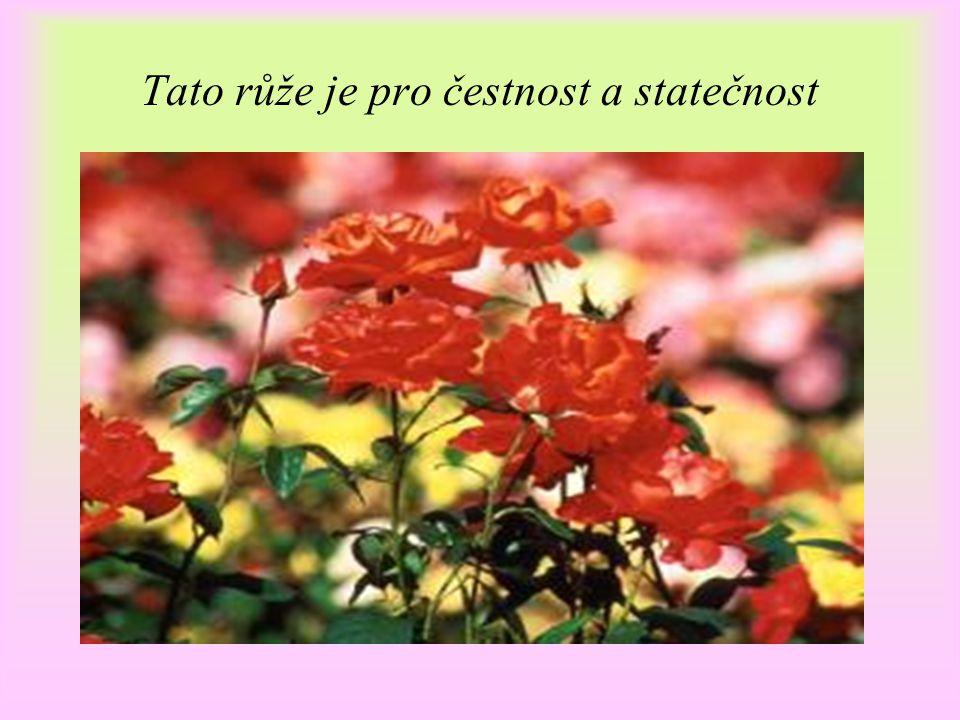 Tato růže je pro čestnost a statečnost