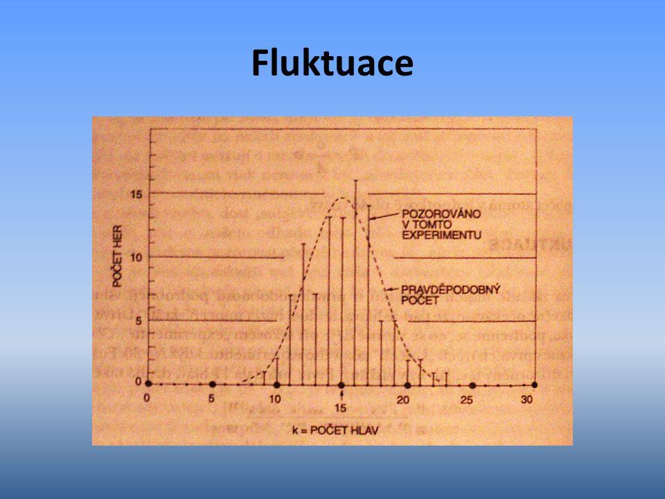 Fluktuace