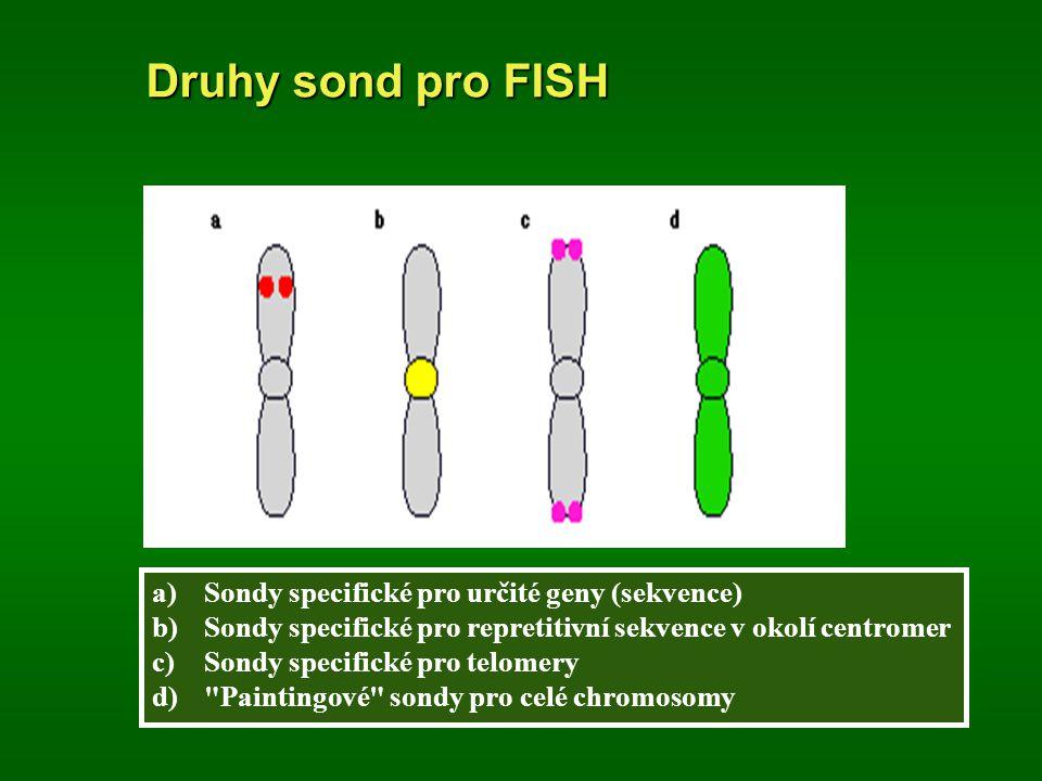 Druhy sond pro FISH Sondy specifické pro určité geny (sekvence)