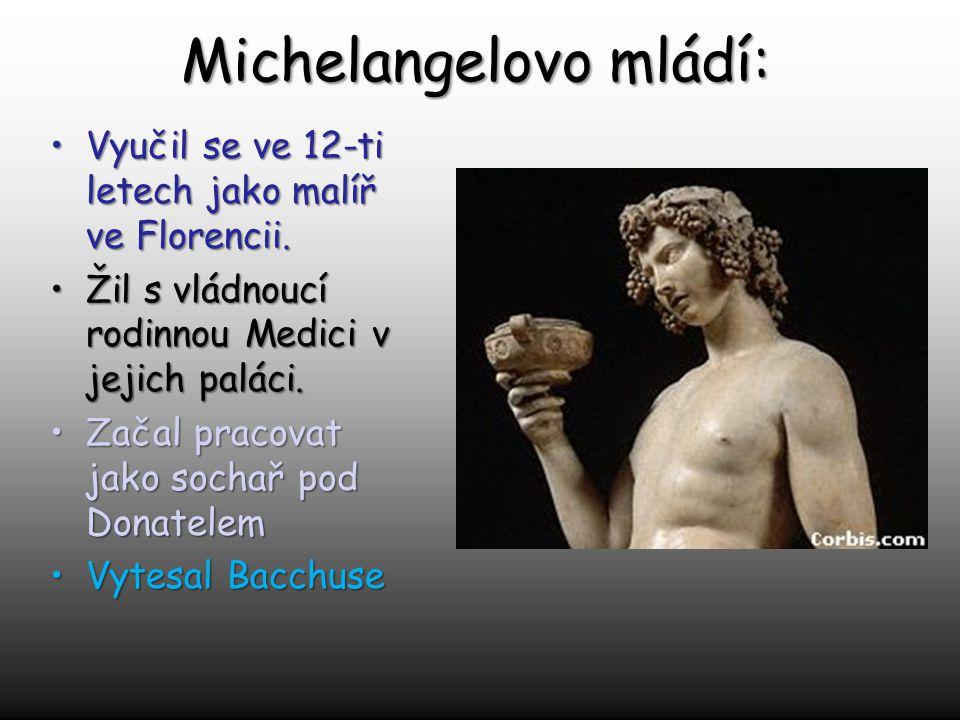 Michelangelovo mládí: