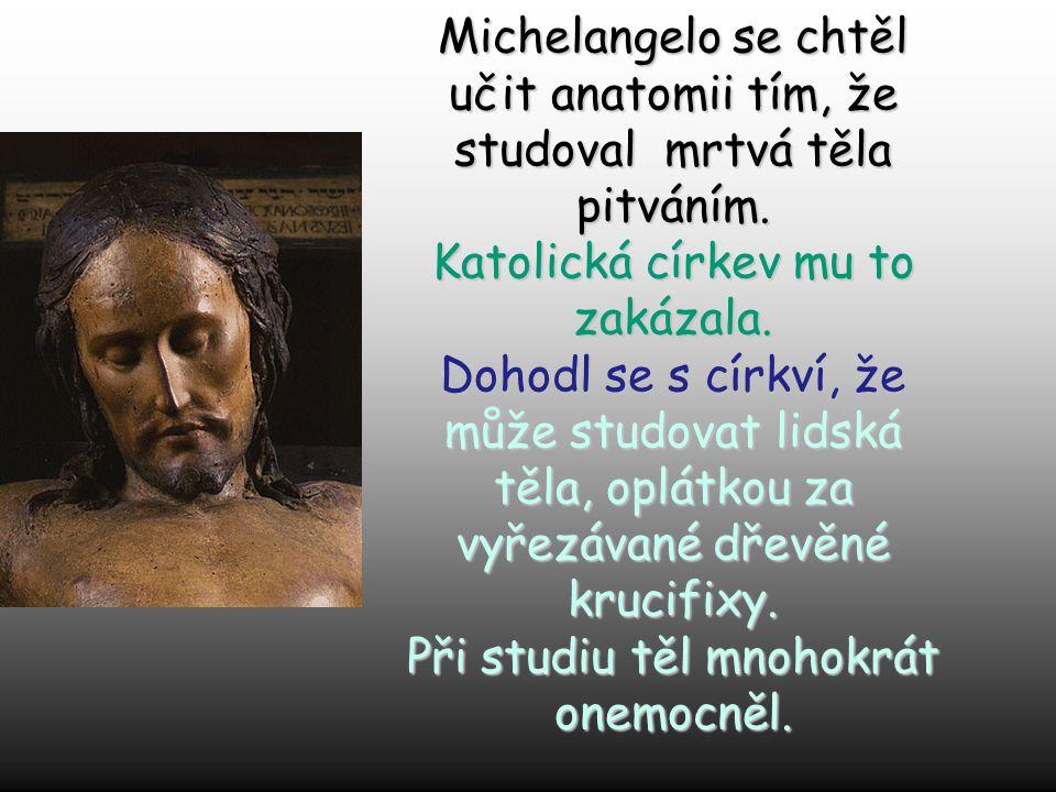 Michelangelo se chtěl učit anatomii tím, že studoval mrtvá těla pitváním.