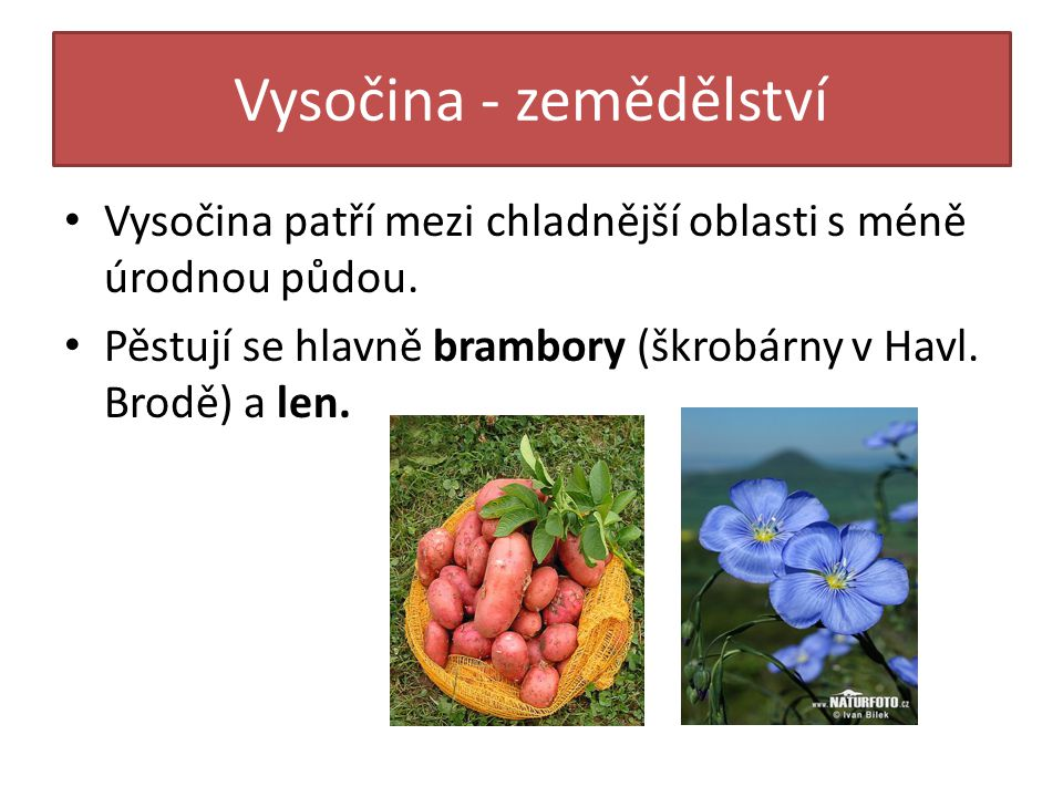 Vysočina - zemědělství