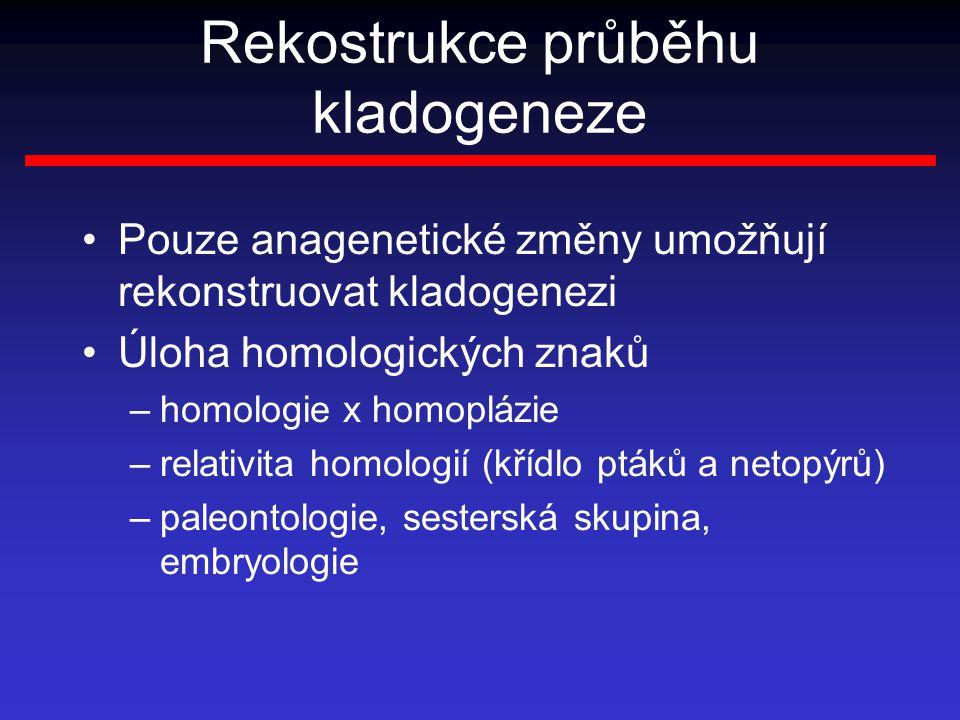 Rekostrukce průběhu kladogeneze