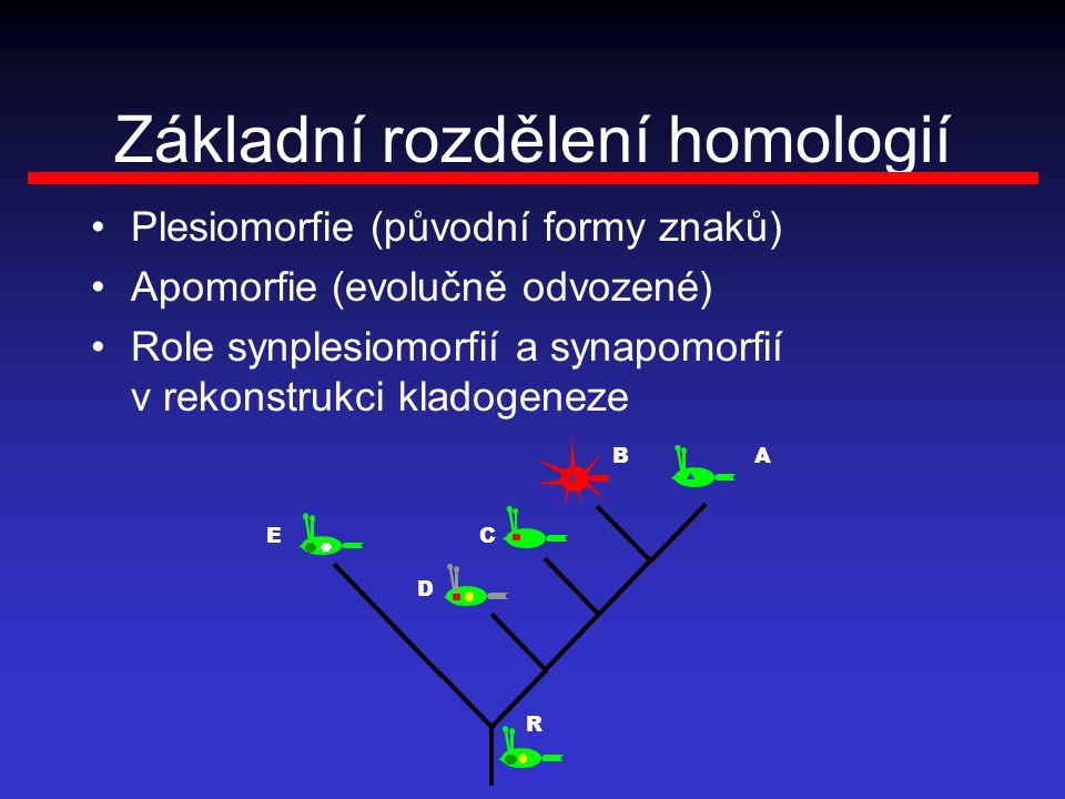 Základní rozdělení homologií