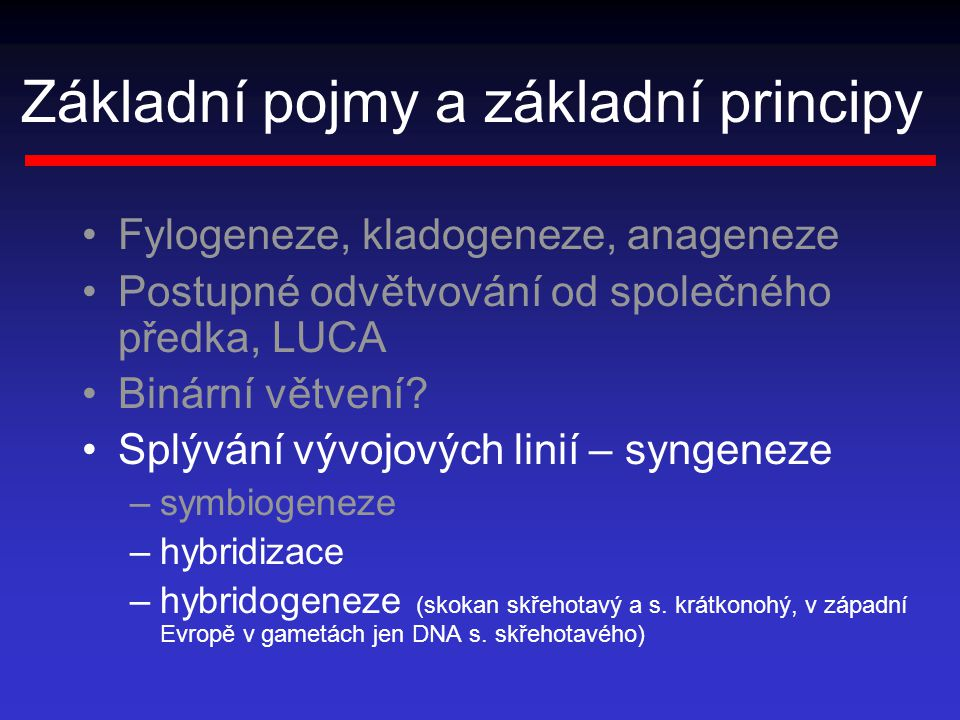 Základní pojmy a základní principy
