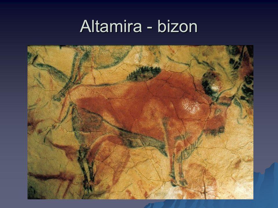 Altamira - bizon