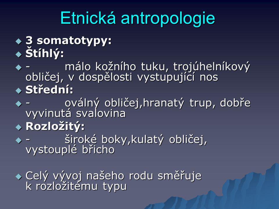 Etnická antropologie 3 somatotypy: Štíhlý: