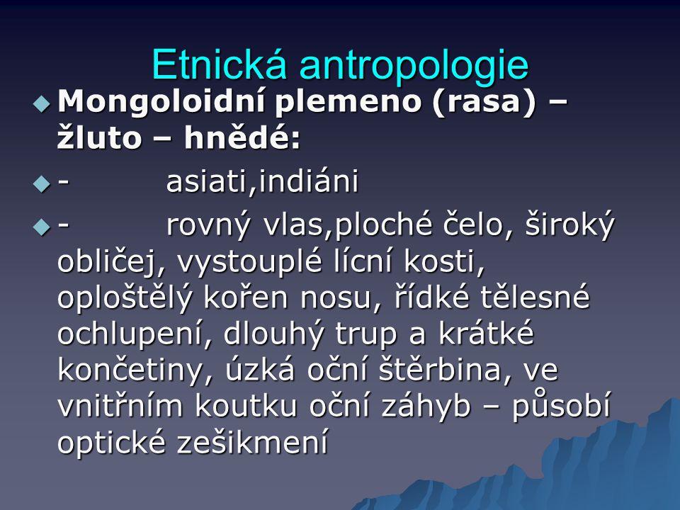 Etnická antropologie Mongoloidní plemeno (rasa) –žluto – hnědé: