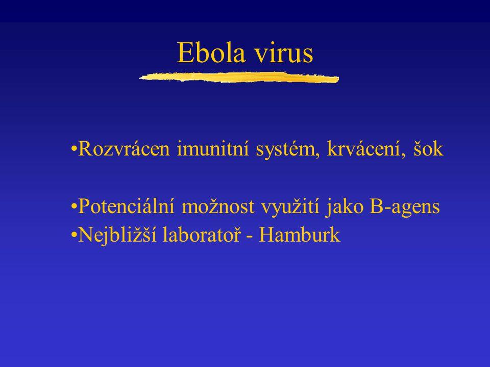 Ebola virus Rozvrácen imunitní systém, krvácení, šok