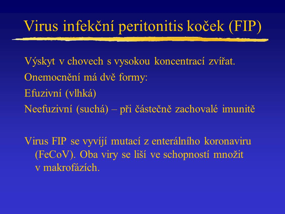Virus infekční peritonitis koček (FIP)