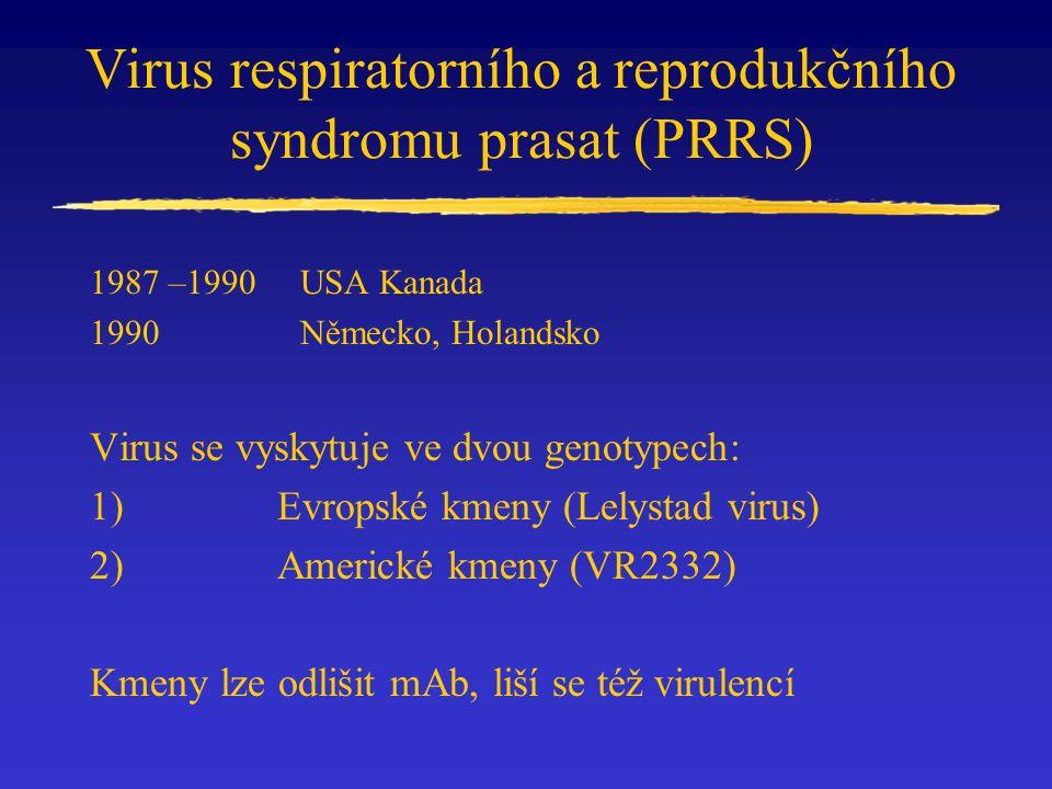 Virus respiratorního a reprodukčního syndromu prasat (PRRS)