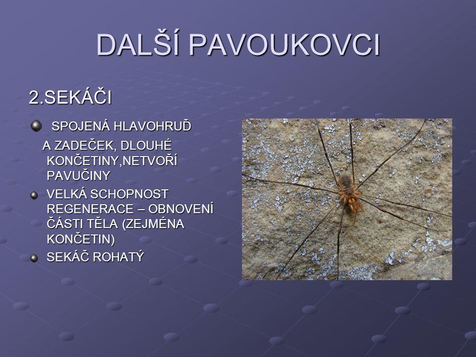 DALŠÍ PAVOUKOVCI 2.SEKÁČI SPOJENÁ HLAVOHRUĎ