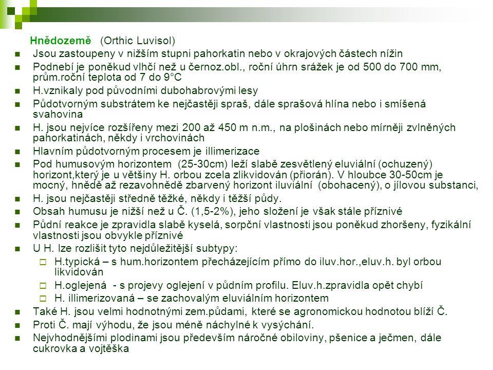Hnědozemě (Orthic Luvisol)