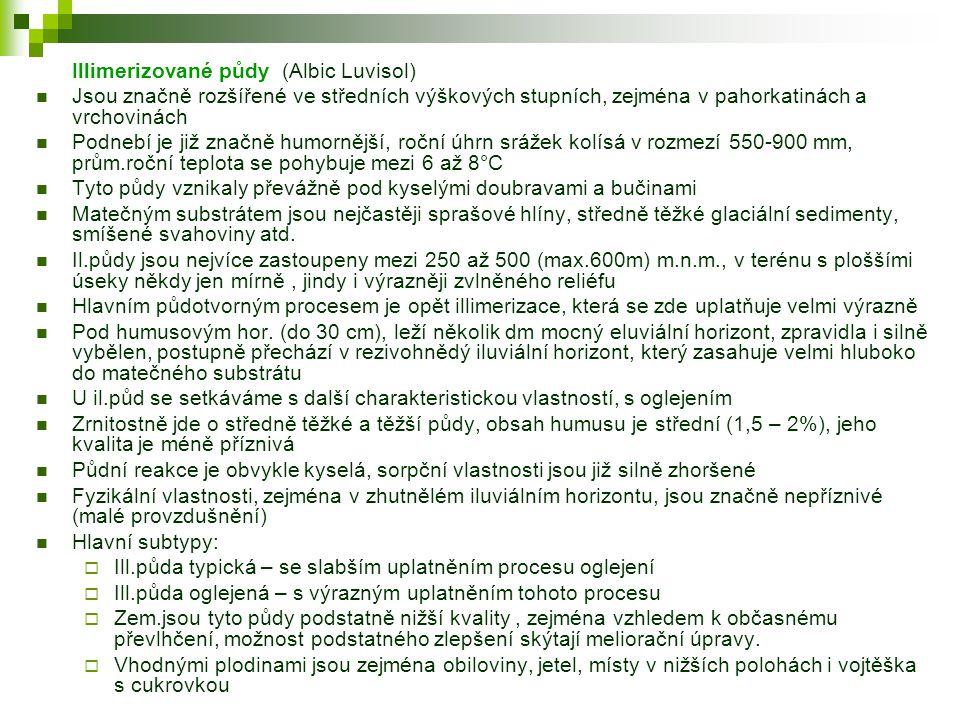 Illimerizované půdy (Albic Luvisol)