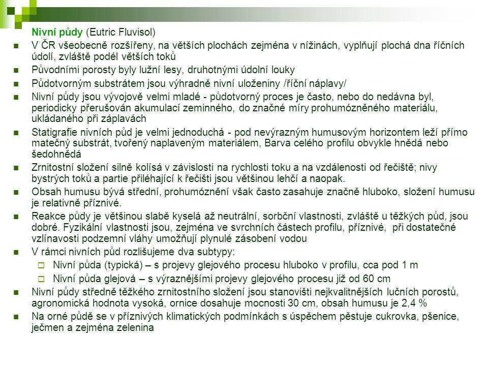 Nivní půdy (Eutric Fluvisol)