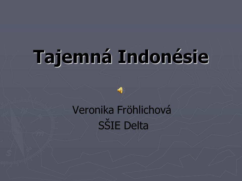 Veronika Fröhlichová SŠIE Delta