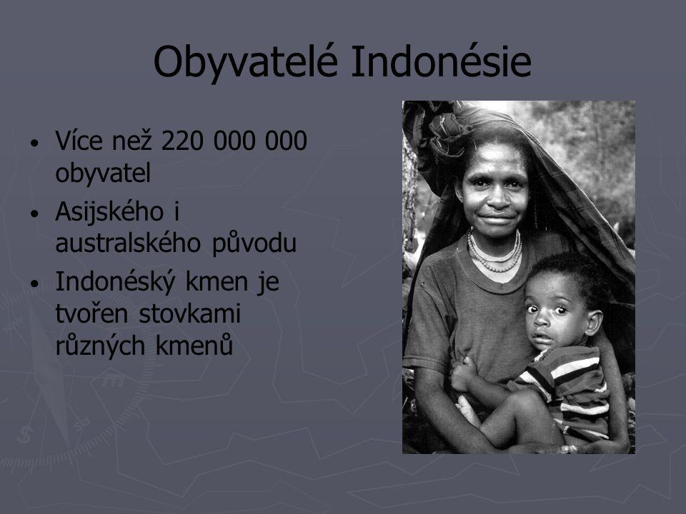 Obyvatelé Indonésie Více než 220 000 000 obyvatel