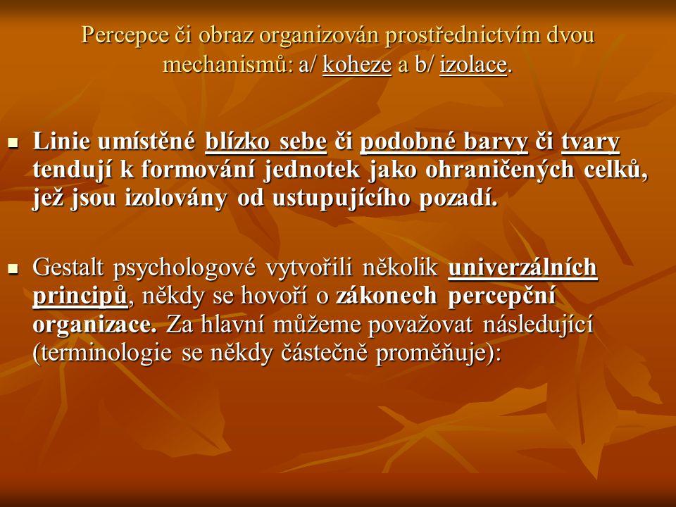 Percepce či obraz organizován prostřednictvím dvou mechanismů: a/ koheze a b/ izolace.