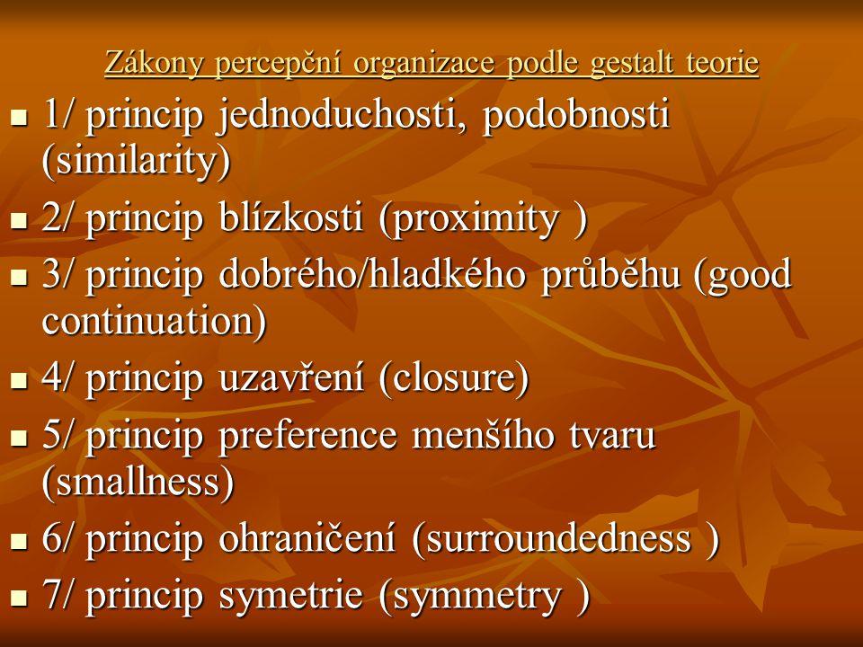 Zákony percepční organizace podle gestalt teorie