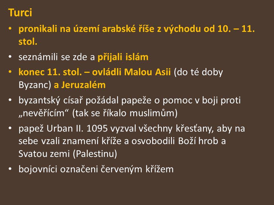 Turci pronikali na území arabské říše z východu od 10. – 11. stol.
