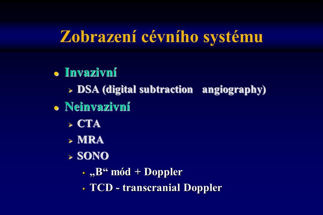 Zobrazení cévního systému