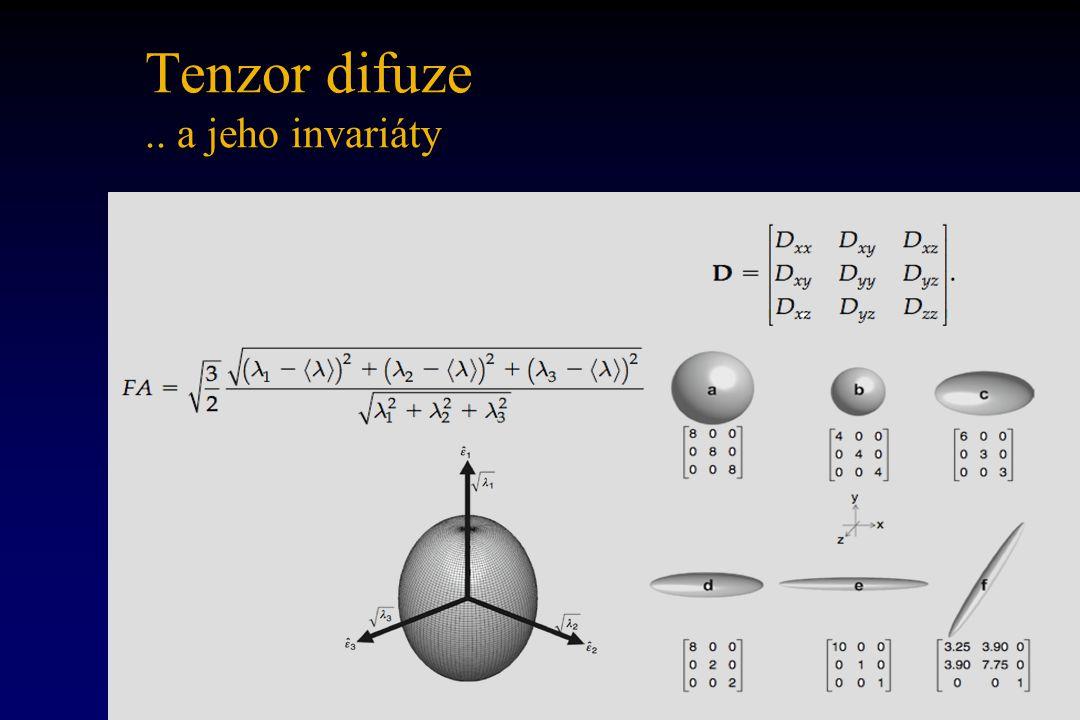 Tenzor difuze .. a jeho invariáty