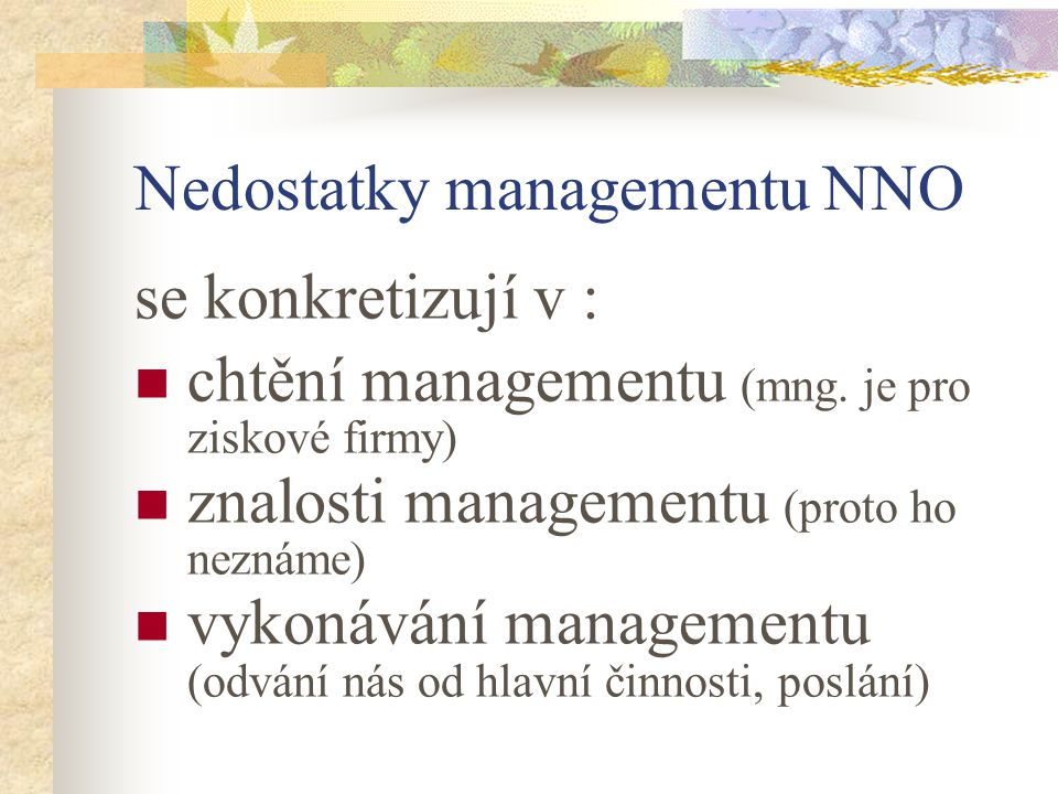 Nedostatky managementu NNO