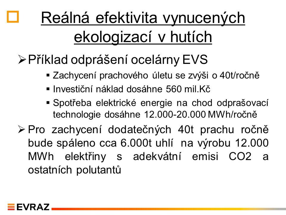 Reálná efektivita vynucených ekologizací v hutích
