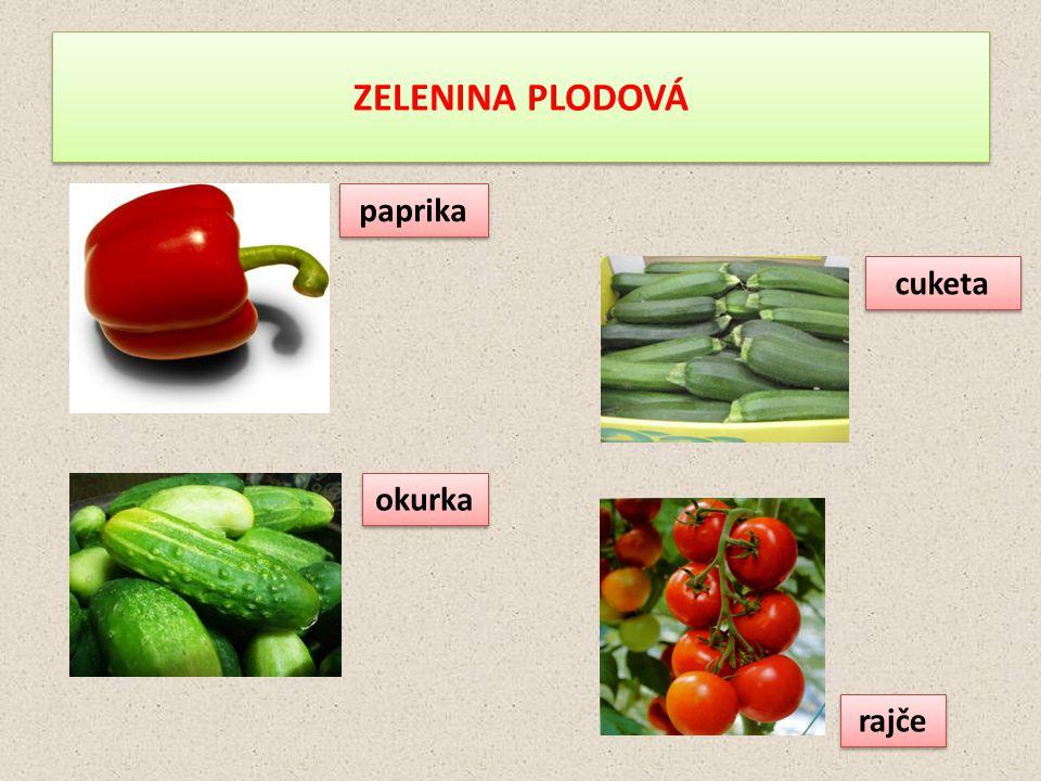 ZELENINA PLODOVÁ paprika cuketa okurka rajče