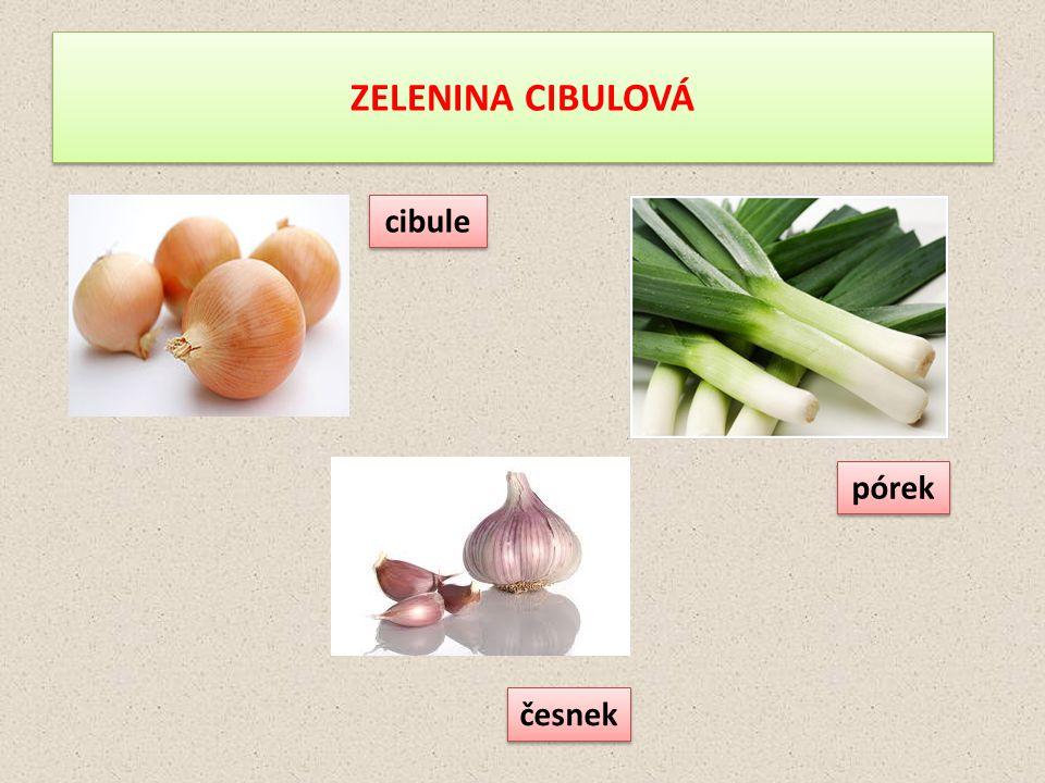 ZELENINA CIBULOVÁ cibule pórek česnek